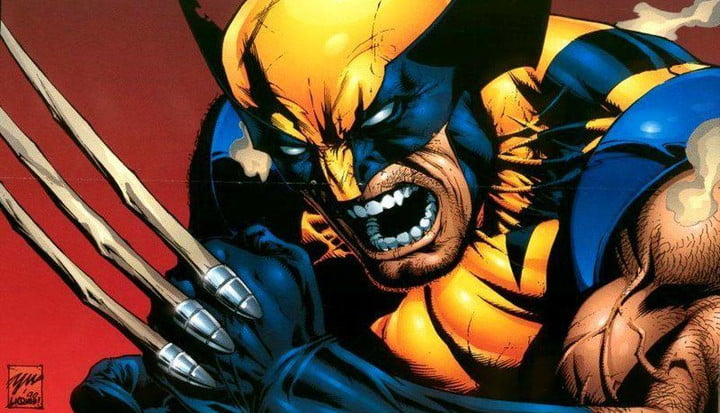That is the true Wolverine, the animal that impressed the Marvel character.